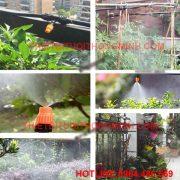 Bộ tưới nhỏ giọt 3-50 khay, chậu, gốc tưới rau, cây cảnh