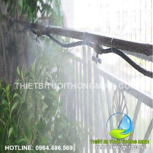 Thi công lắp tưới phun sương tưới cây ban công nhà cô Bảy Phụng