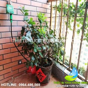 http://thietbituoithongminh.com/san-pham/van-nuoc-hen-gio-tuoi-tu-dong-dung-pin/
