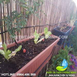Lắp tưới nhỏ giọt tưới khay rau xếp tầng, tưới cây tự động sân trước