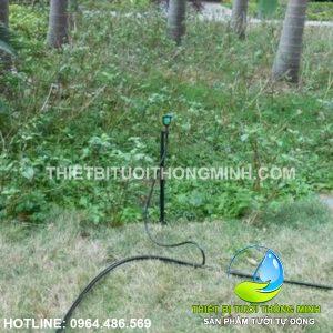Lắp đặt tưới phun mưa vườn cây dừa, cỏ, cảnh biệt thự sân vườn