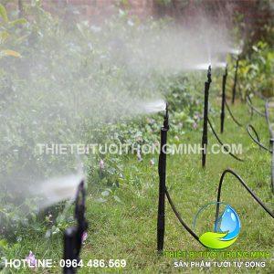 Lắp trọn bộ tưới phun mưa tưới cảnh quan bãi cỏ, cây cảnh gia đình