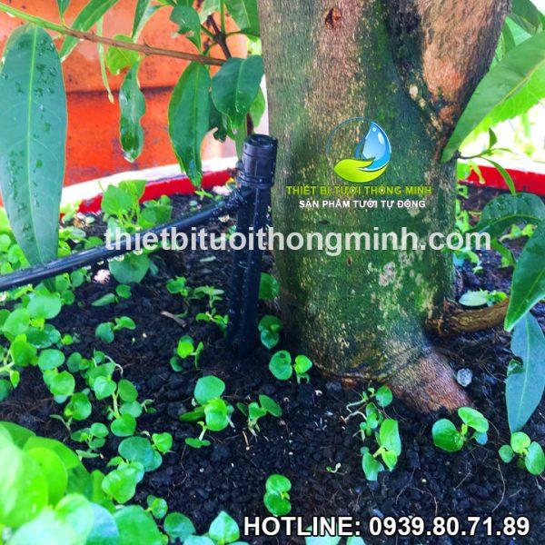 Đầu tưới cắm gốc phun mưa 360 độ Florain