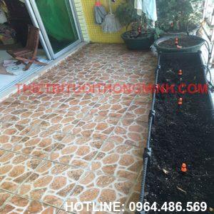 Lắp tưới nhỏ giọt cho khay rau trên ban công chung cư nhà cô 2 Hường