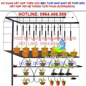 Bộ tưới phun sương tưới hoa lan, tưới rau tự động(50-100) chậu