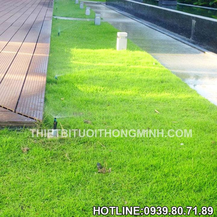 Phương pháp tưới phun mưa tưới cỏ