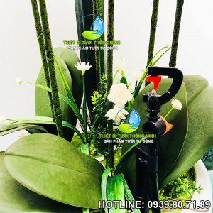 Đầu tưới cắm gốc phun nước 120 độ Florain