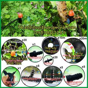 Thiết bị tưới phun nước cây cảnh khay rau ống 16ly 20 béc cắm gốc 8 tia Malee thái lan