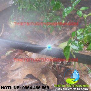 Béc bọ phun mưa 360 họng 3.5mm gắn ống 6mm