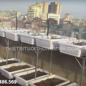 Béc tưới phun mưa (sương) 360 hạt mềm tưới rau, cây cảnh, lan