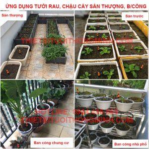 tưới cây nhỏ giọt tưới rau, cây cảnh trên sân thượng ban công