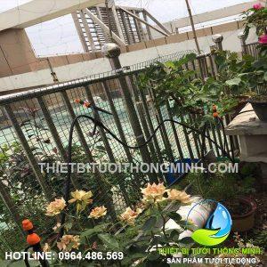 Thi công tưới vườn dưới sân tự động tưới nhỏ giọt tiết kiệm nước