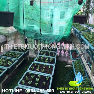 Thi công tưới phun mưa thả giàn treo xuống tưới các khay rau nhựa trồng sân thượng
