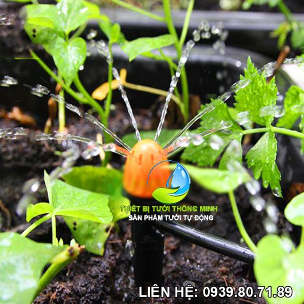 Đầu tưới cắm gốc phun nước 8 tia Florain (nhựa cao cấp thái lan)