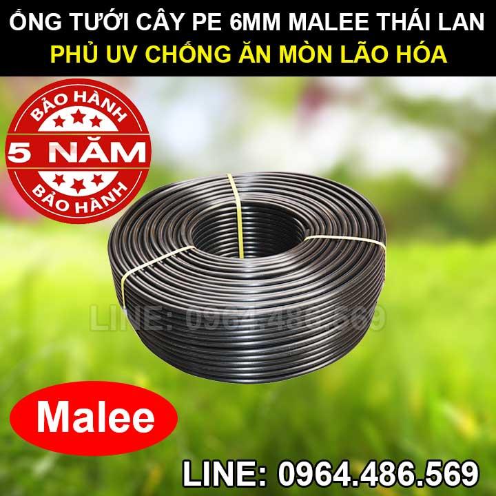 Ống pe 6mm tưới cây malee