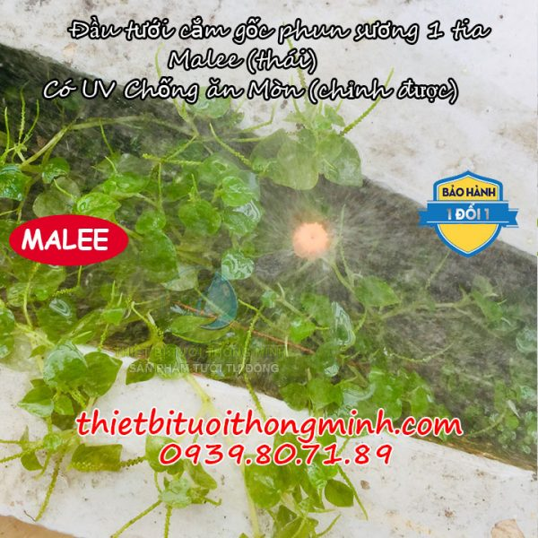 Đầu tưới phun sương cây cắm gốc Malee