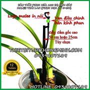 Đầu tưới cắm gốc phun nước 180 độ Malee thái lan