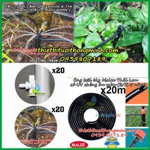 Bộ tưới cây phun nước 8 tia 20 đầu tưới ren vặn ống cứng PVC Florain