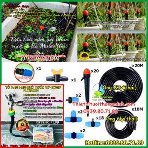 Bộ tủ hẹn giờ tưới cây phun nước mưa 8 tia tự động 20 béc Malee