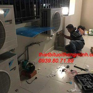 Lắp đặt hệ thống thiết bị tưới khay rau tự động trên sân thượng tân phú