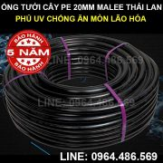 Ống pe 20mm Malee