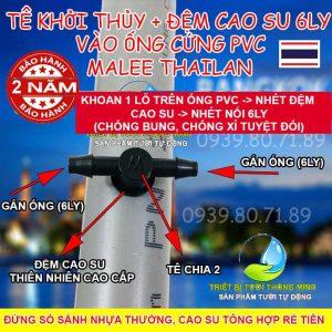 Tê nối 6ly khởi thủy đệm cao su ống cứng PVC Malee