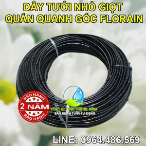 Ống dây tưới nhỏ giọt quấn quanh gốc ống 6ly khoảng cách 30cm Florain
